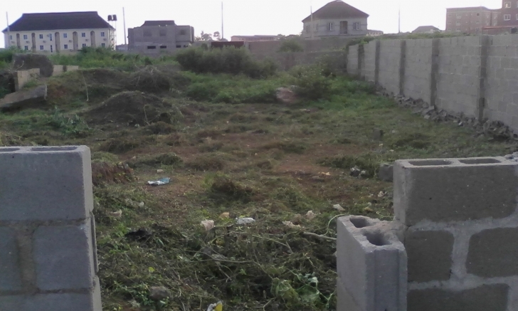 Exquisite Plots Of Land | Amazing Property Plot Of Land In Nigeria Photo
