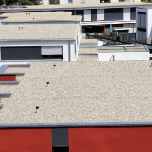 Problems With Flat Roofed Houses
