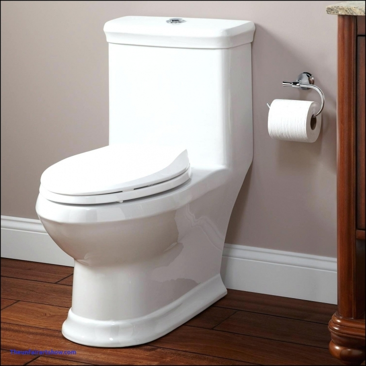 Stunning Wealth Floor Mount Rear Discharge Toilet Elegant | Desafiocincodias Best Home Image 6 Room 1 Toilet Image