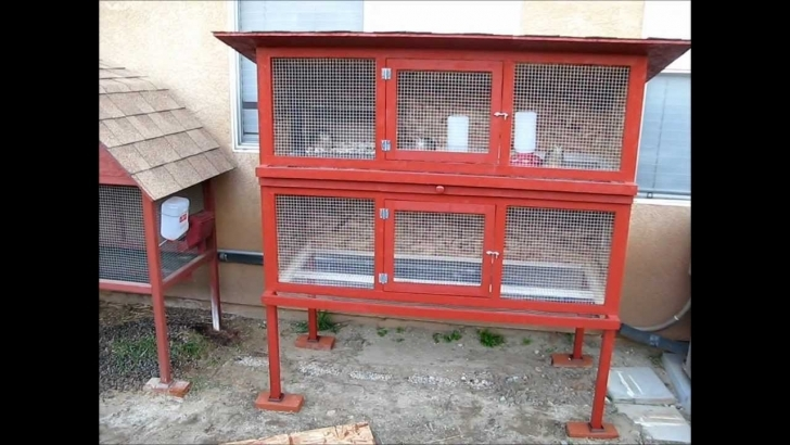 Top Homemade Quail Cage - Youtube Quail Housing Plans Picture