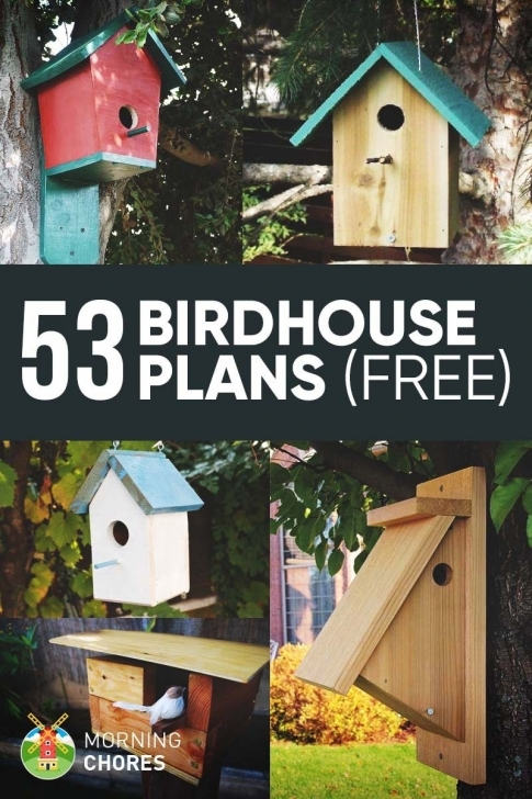 Great 53 Free Diy Bird House & Bird Feeder Plans That Will Attract Them To Bird House Plans Picture