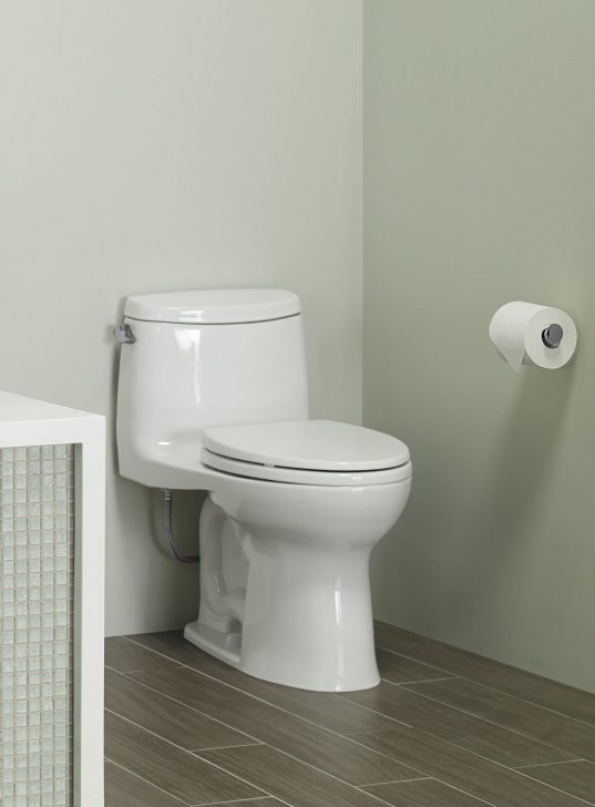 Remarkable Excellent Toto One Piece Elongated Toilet Ultramax Ii Bowl 1 28 Gpf Best Home Image 6 Room 1 Toilet Image